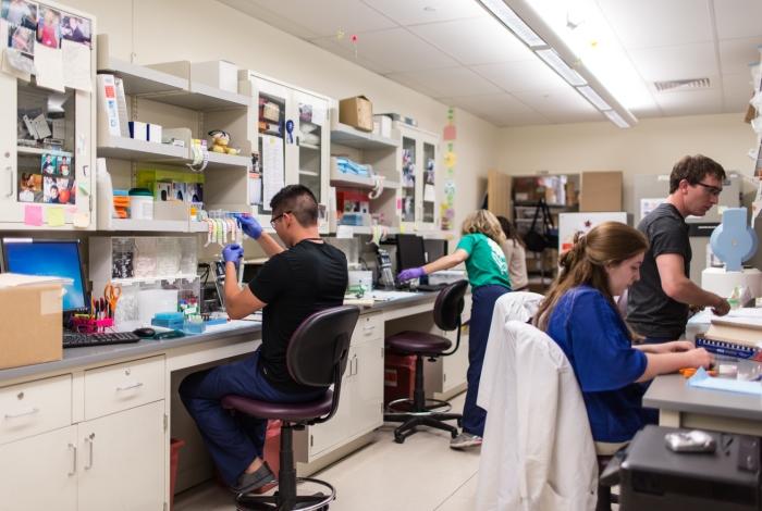 Researchers in a lab in Denver.