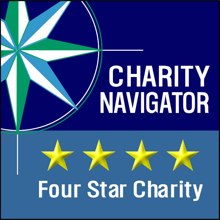 Rheumatology Research Foundation Earns 4-Star Rating from Charity Navigator For 12th Consecutive Year