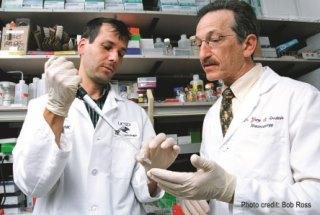 Rheumatologist Dr. Gary Firestein and a colleague in their lab.